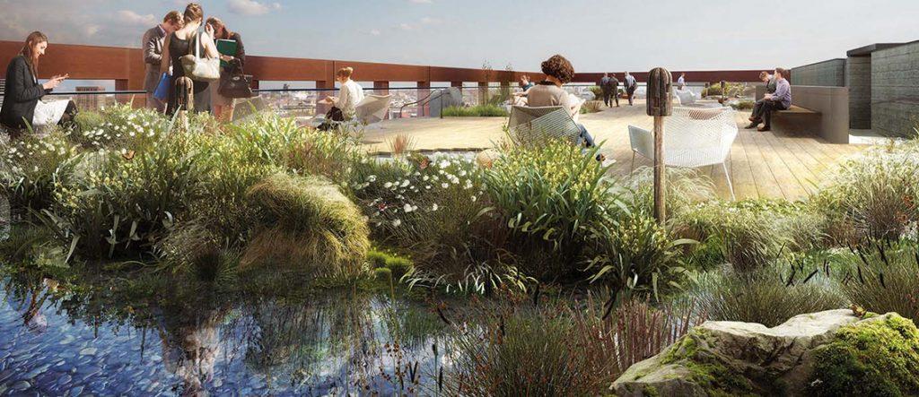 Rooftop Garden London Project
