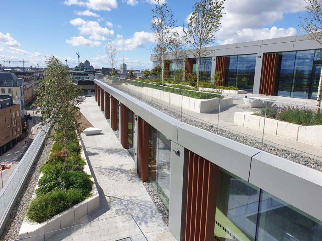 Cardiff lane project